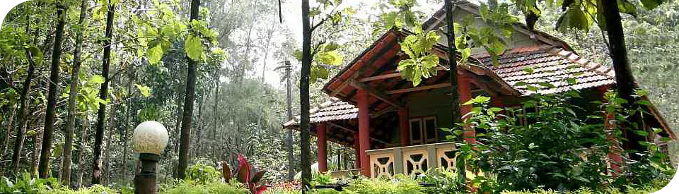 The Ayurveda Sanctuary offers an array of authentic Ayurveda Wellness experiences in a lush green indigenous setting